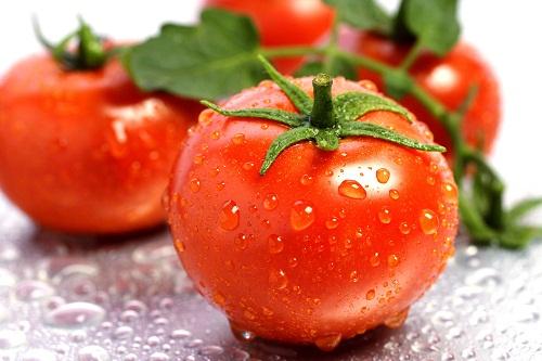 Trẻ hóa da từ cà chua