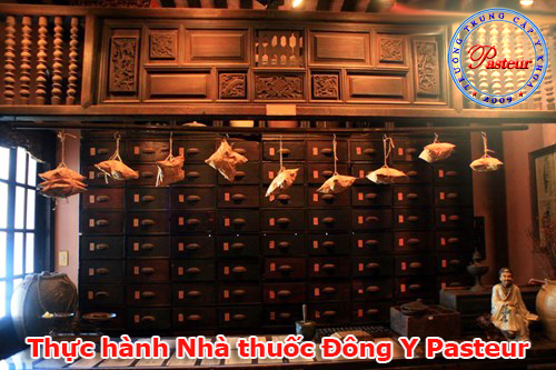 thuc-hanh-nha-thuoc-dong-y-pasteur