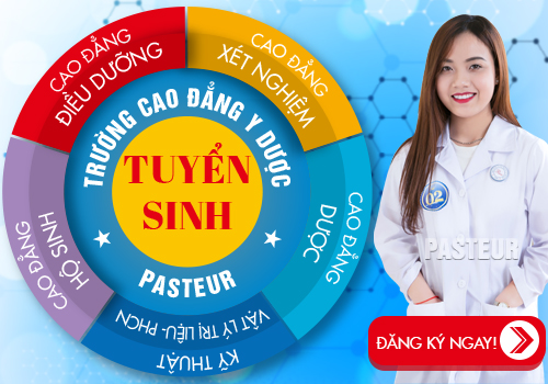 Các ngành đào tạo của Trường Cao đẳng Y Dược Pasteur