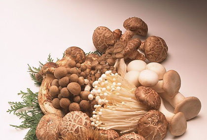 Mang thai bà bầu có nên ăn nấm không?